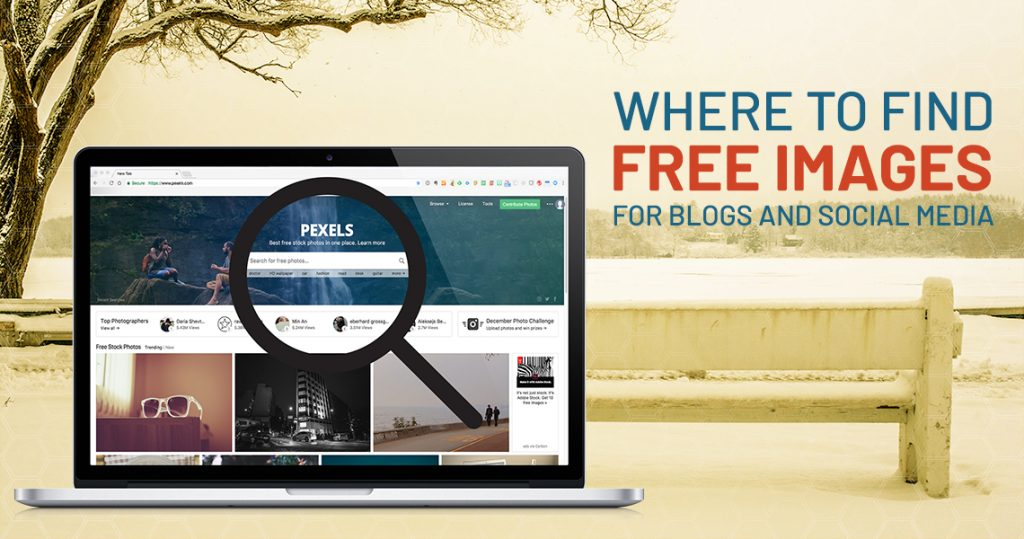 Where to Find Free Images HeaderImage